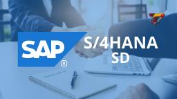 Curso-SAP-S4HANA-SD-Vendas-e-Distribuição-Miniatura-Treinar.png