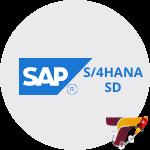 Curso-SAP-S4HANA-SD-Vendas-e-Distribuição-Icone-Treinar.png