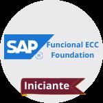 Icone Academia SAP Curso Funciona ecc fundation SAP Treinar MInas