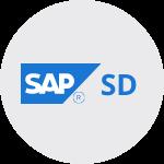 Icone Academia SAP Curso sd SAP Treinar MInas.png